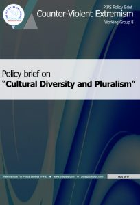 Book Cover: National Policy brief-8 Cultural Diversity and Pluralism